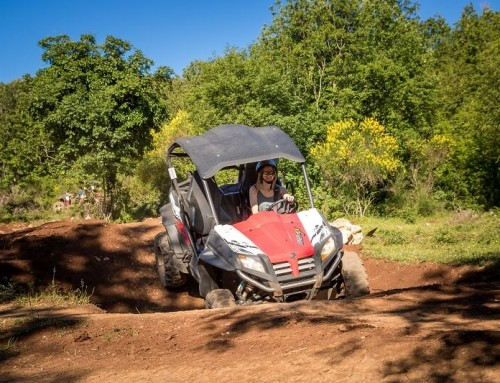 Buggy Safari Dubrovnik has opened its doors and everything is ready for new, hot season!