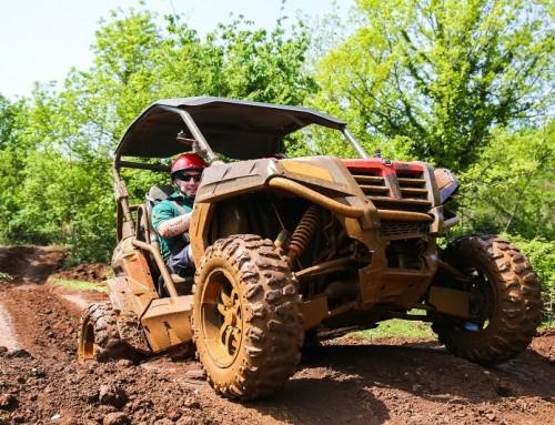 Tips and tricks for Buggy safari tour